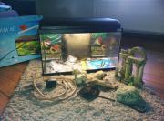 Aquarium 60x30x40 cm