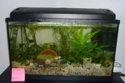 Aquarium 64L