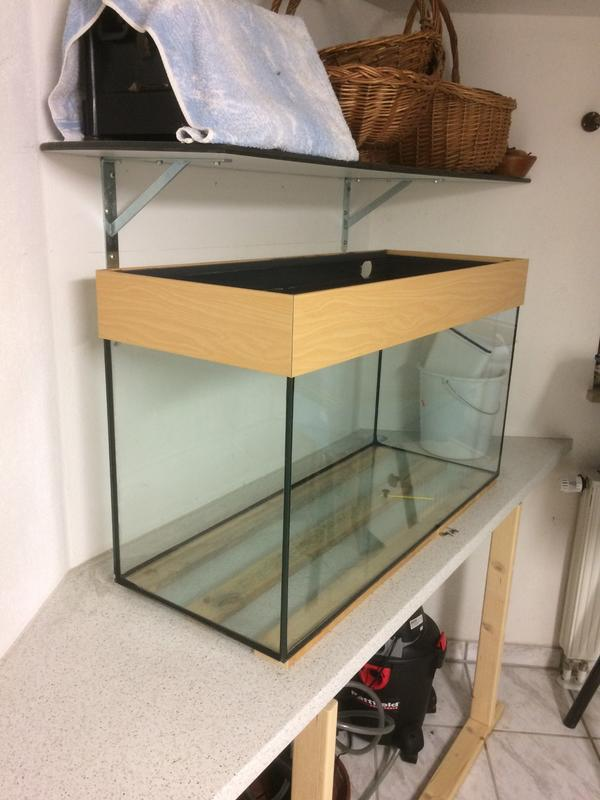 Aquarium 100x40x50 kleinanzeigen kaufen verkaufen bei for Aquarium gebraucht