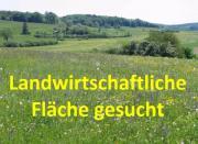 Bauernhof / Landwirtschaft gesucht
