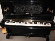 Bechstein Klavier