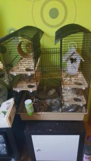 Biete Hamsterkäfig mit
