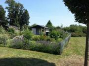 Biete: Kleingarten im