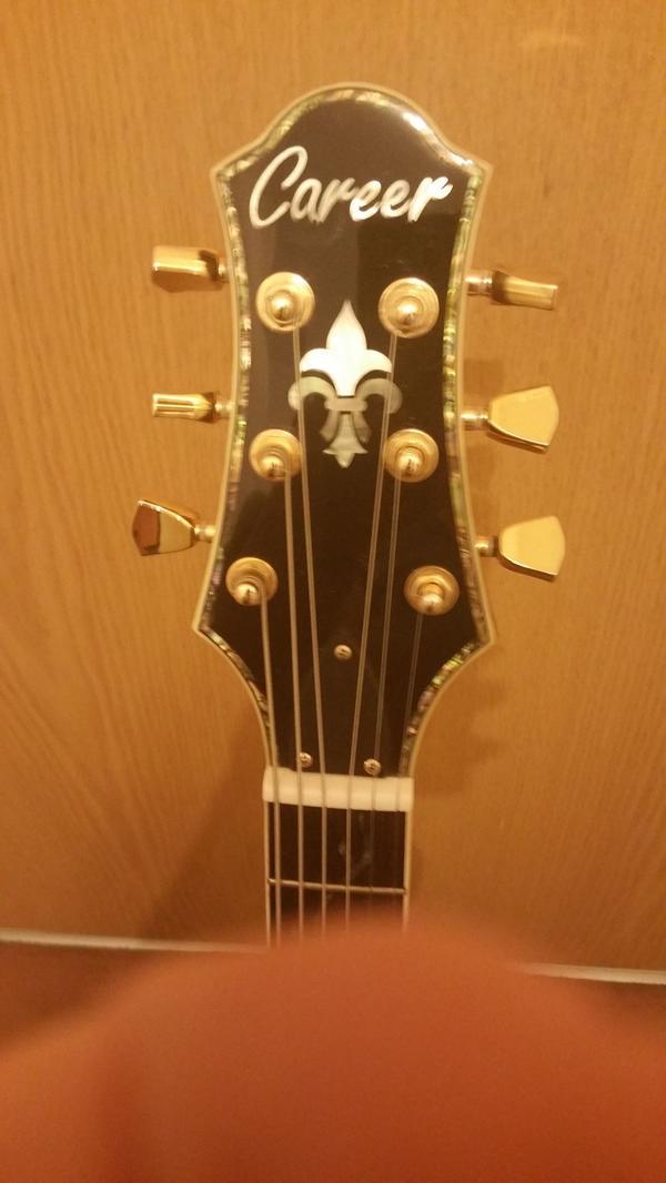 Ziemlich Die Anatomie Einer Gitarre Bilder - Menschliche Anatomie ...
