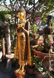 ca 2 Meter Buddha stehender