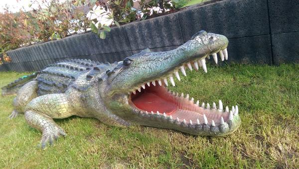 Deko krokodil f r garten teich schaufenster for Deko fur garten und terrasse