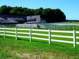 Pferde - Einzäunung in weiß Kunststoff für