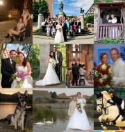 Fotograf für Hochzeit,