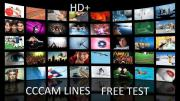 free cccam linie
