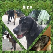 Gina liebes Hundemädchen