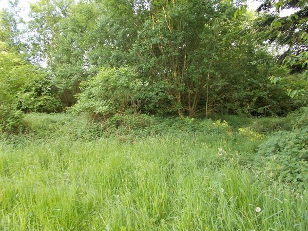 Grundstück Natur » Grundstücke, Bauplätze