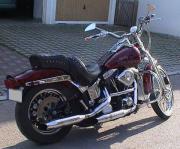 Harley Springer Softail -