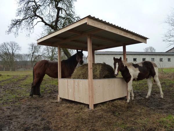 heuraufe mit dach 2 50 x 2 50m pferde pony shetty raufe 1 80 x1 80m in br el pferdeboxen. Black Bedroom Furniture Sets. Home Design Ideas