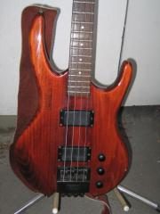 Hohner/Steinberger Professional-