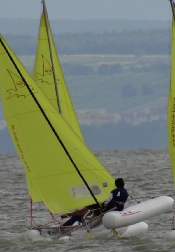 KATAMARAN YELLOW-FISH » Segelboote