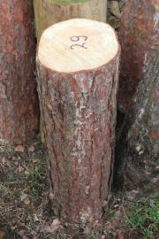 Kiefern-Hackklotz 29er zum Brennholz selber