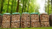 LKW Ladung Brennholz