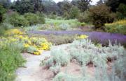 Ökologische gartengestaltung in freiburg - sonstiges für den, Garten ideen