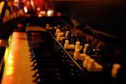 Organist / Keyboarder gesucht