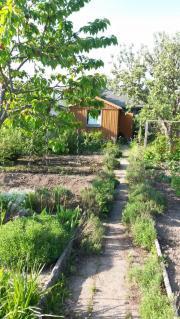 Pächter für Gartensparte
