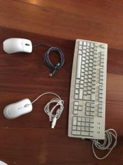 PC Maus und