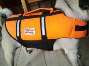 Schwimmweste Rettungsweste für kleinen Hund