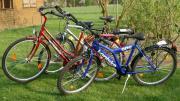 Suche Fahrräder für