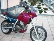 Supermoto Honda 650NX