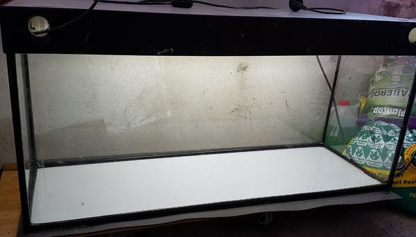 Aquaristik in poxdorf oberfranken bei deinetierwelt for Aquarium 120x40x50