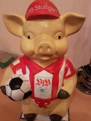 VFB Schwein
