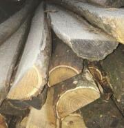 Zaunpfosten aus Akazienholz,